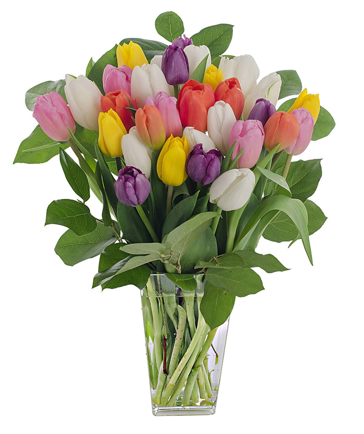 Stargazer Barn Rainbow Bouquet, Stems Of Fresh Tulips With Clear Vase