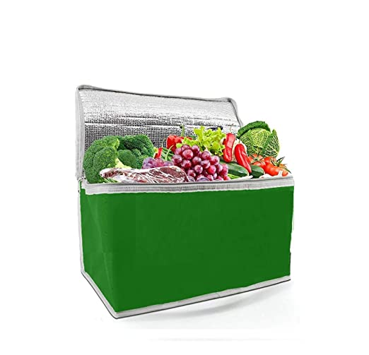 Ducomi Bolsa Nevera térmica - Termo frigorífico portátil para ...