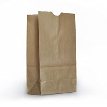 Amazon.com: 1 X Small Brown Paper Bags - 100 Pack