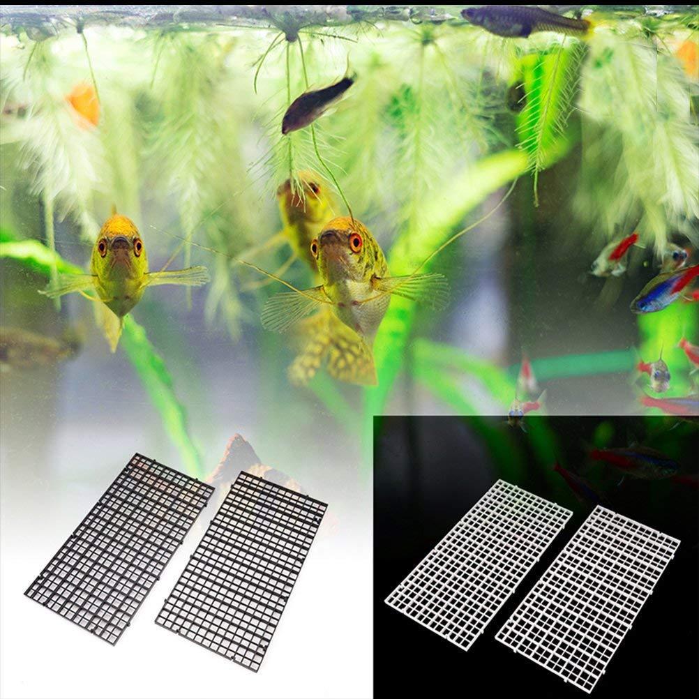 pecera CCCYMM 4 separadores de rejilla para huevo de la caja de la lona para acuario parte inferior con aislamiento acuario