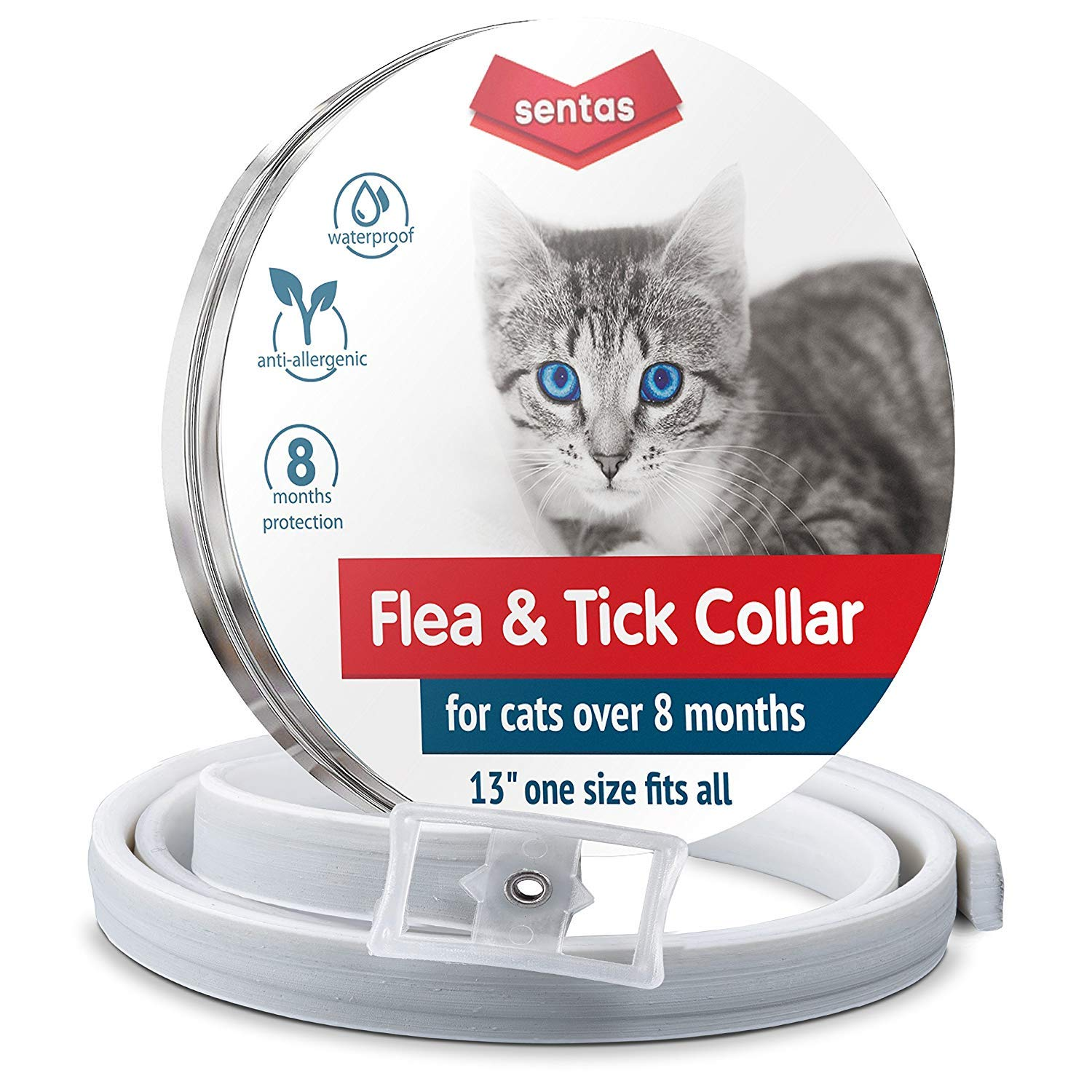 Luxury or necessity Choose a collar for fleas for a cat