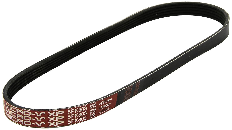 GAT 5PK803 Keilrippenriemen Micro-V/® XF