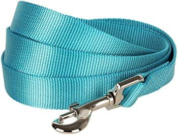 Blueberry Pet Classic Solid Color Dog Leash