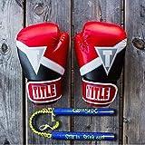 Glovestix Odor Eliminator - Deodorizer for
