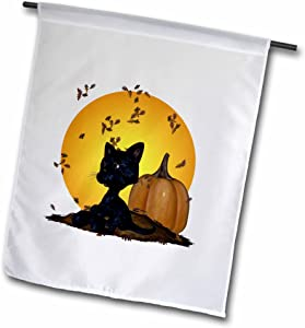 3dRose fl_19396_1 Black Cat with Pumpkins and Halloween Moon Garden Flag, 12 by 18-Inch