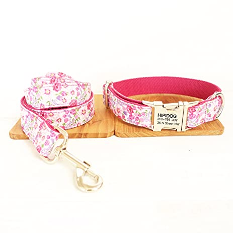 Personalized Dog Collar & Leash Set