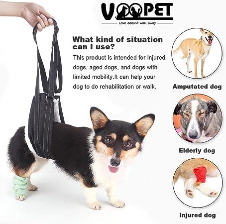 Amazon.com: Voopet - Arnés de soporte de cadera, portátil ...