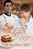A Slice of Love (Taste of Love Stories Book 4)