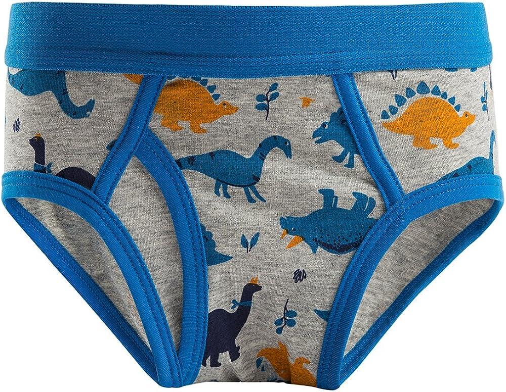 B.GKAKA Boys Underwear Toddler /& Little Kids Spandex Cotton Print Briefs 5 of Pack