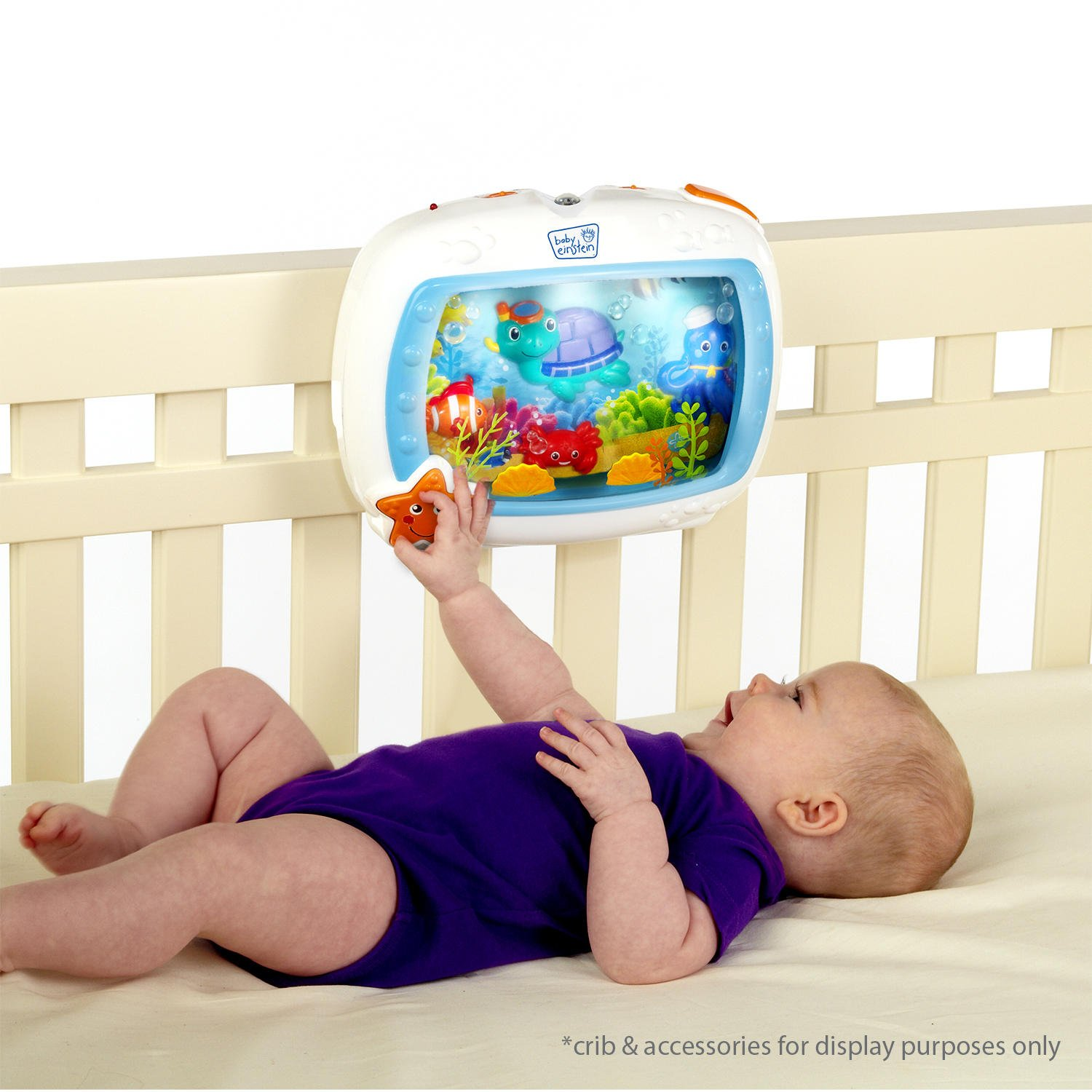 Amazon Baby Einstein Sea Dreams Soother Baby