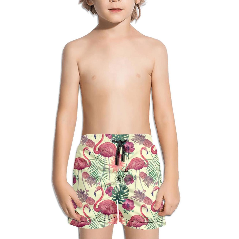 Shorts Swim for Kid Quick Dry Side Split Slim Fit Swim Holiday Medium Length Flamingos Life Bird