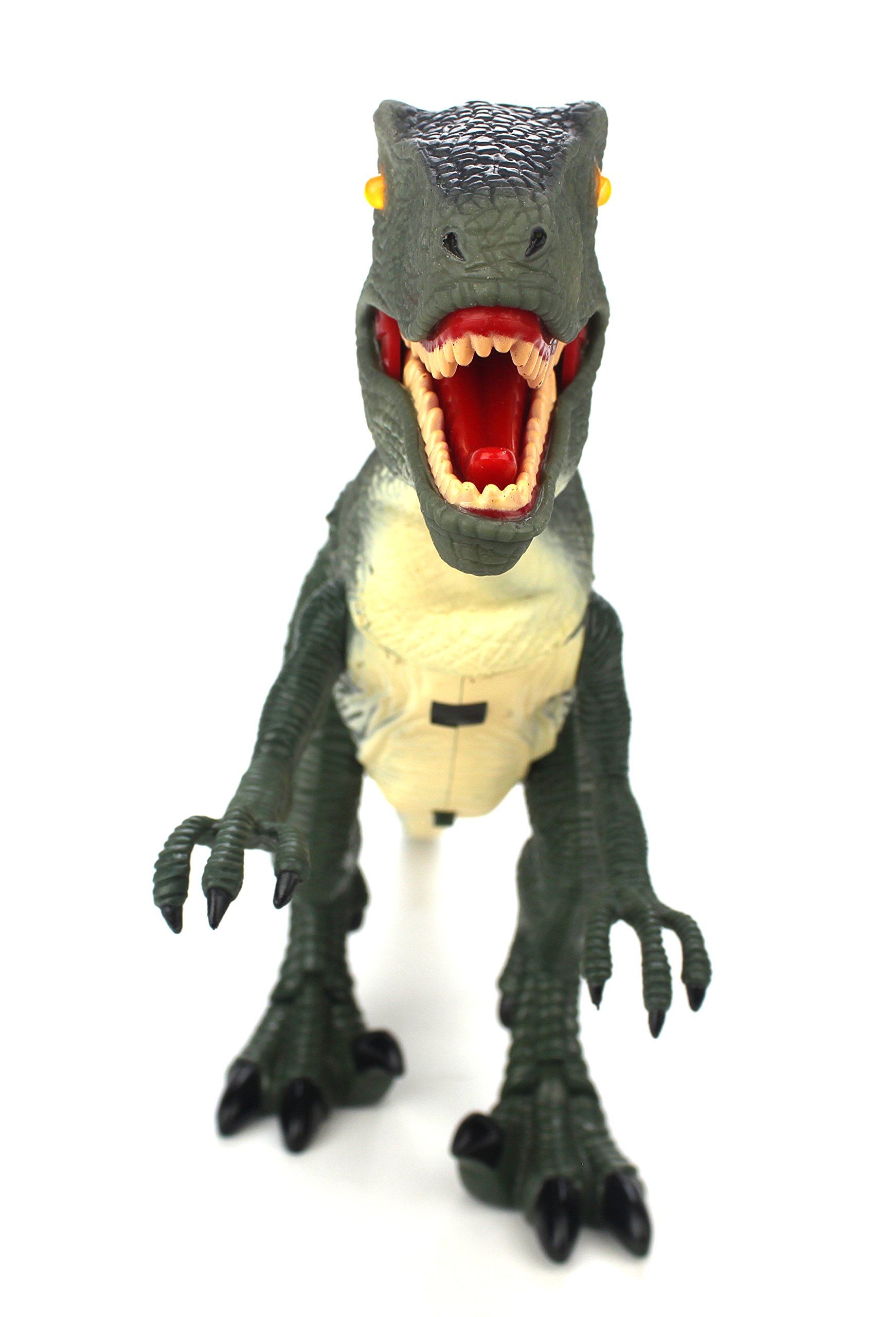 Dinosaur Planet Raptor Remote Controlled RC Battery Operated Toy Velociraptor Figure w/Shaking Head, Walking Movement, Light Up Eyes & Sounds by Velocity Toys (Image #5)