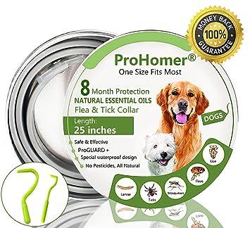 ProHomer® Collares Antiparasitario para Perros, Mata Las Garrapatas y Las Pulgas de Manera Efectiva, Impermeable Perros Pequeños, Medianos y Grandes: ...