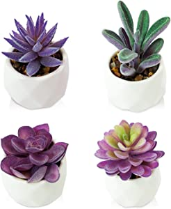 DICOBEE Faux Succulents in Pots, Purple Succulent Artificial Plants for Home Decor, Small Fake Succulents Plants Set, Decorative Desk Plant for Bathroom Bookshelf Office Bedroom Aesthetic, Set of 4