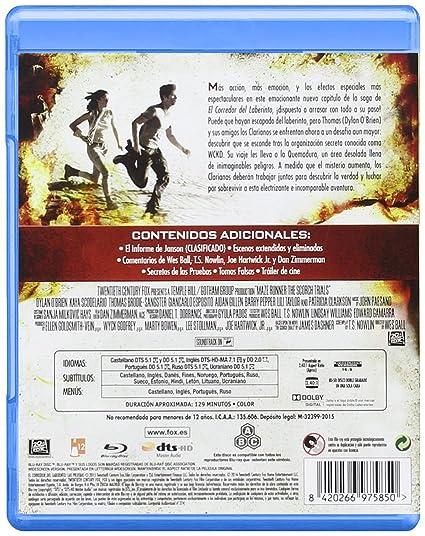 El Corredor Del Laberinto: Las Pruebas [Blu-ray]: Amazon.es: Kaya ...