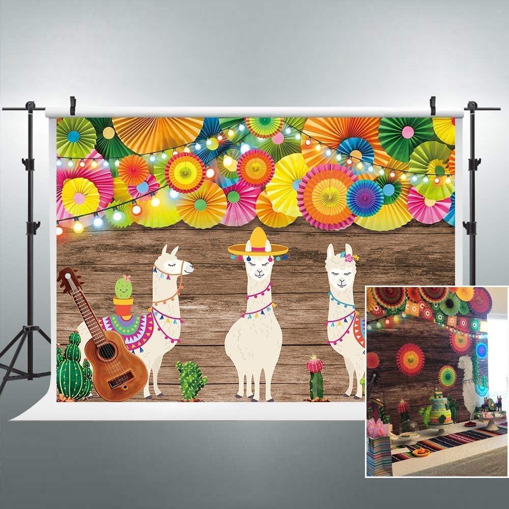 Riyidecor Mexikanischer Fiesta Hintergrund Mexiko Cinco Kamera