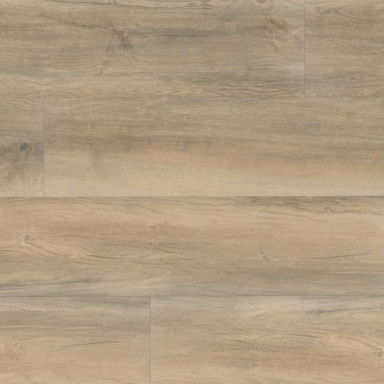 HORI/® Klebe-Vinylboden PVC Bodenbelag I Wasserfest Steinfliese Grau 18,36m/² Bielefeld