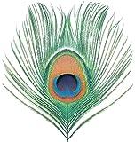 Apple Venus (Vol. 1) [Analog]