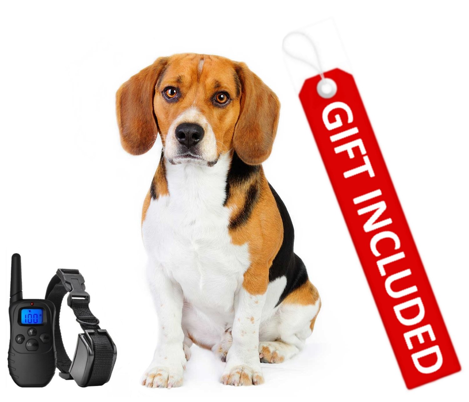 Shock Collar for Small Dogs with Remote + FREE Dog Clicker Training Clicker