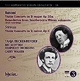 Busoni/Strauss: Romantic Violi