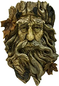 Bits and Pieces - Old Man Tree Hanging Planter-Polyresin Sculpture Made to Look Like Wood - Suitable to Hang Indoors or Outdoors