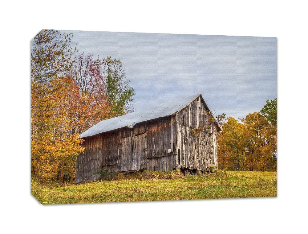 Farmhouse Wall Decor Abandoned Barn Photography Art Canvas Hocking Hills Ohio 'Chapel Ridge Barn'