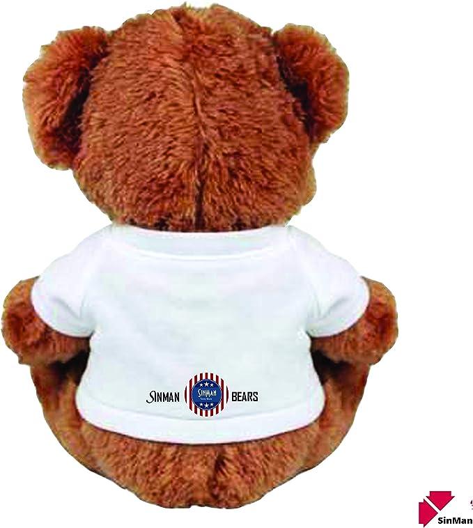 """Funny Teddy... /""""SORRY I/'M SUCH AN IDIOT/"""" 13/"""" Inch Teddy Bear Cute And Cuddly"""