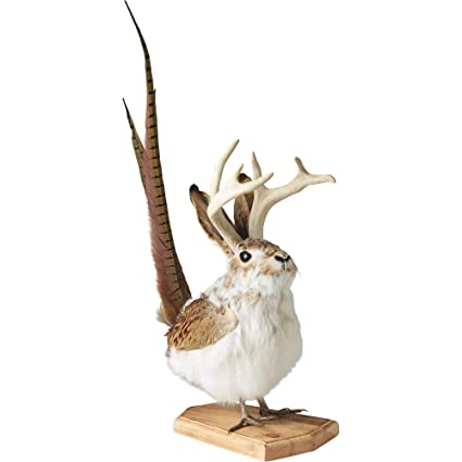 amazon com flying jackalope 16in tall kitchen dining