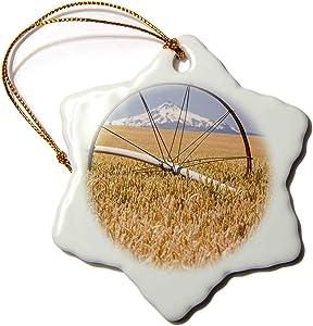 3dRose Wheatfield, Mt. Jefferson in The Background, Eastern Oregon - Ornaments (ORN_332043_1)