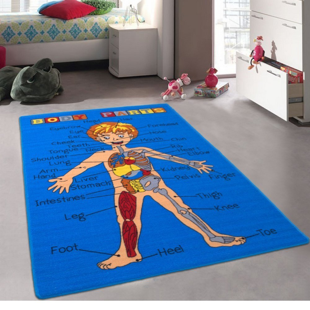 Champion Rugs Kids / Baby Room / Daycare / Classroom / Playroom Area Rug. Body Parts. Science. Anatomy. Fun. Educational. Non-Slip Gel Back. Blue. Bright Colorful Vibrant Colors (3 Feet X 5 Feet)