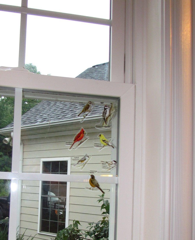 Amazoncom Birds IView Window Clings Home Kitchen - Bird window stickers amazon