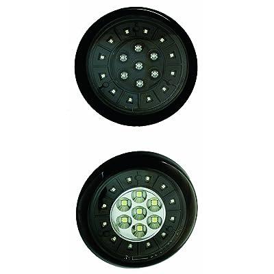 IPCW LEDT-353CB Bermuda Black LED Tail Lamp - Pair: Automotive