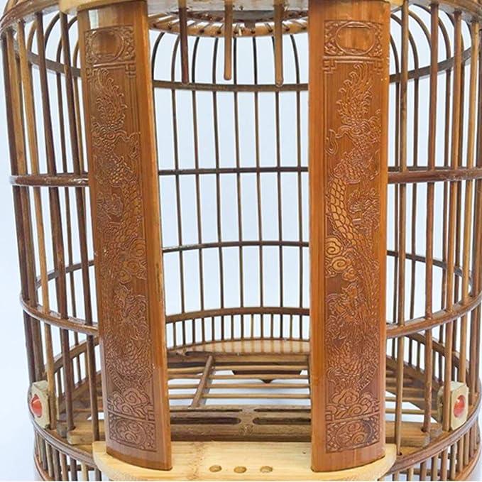 Colector de semillas de jaula de pájaros de interior Mejorada ...