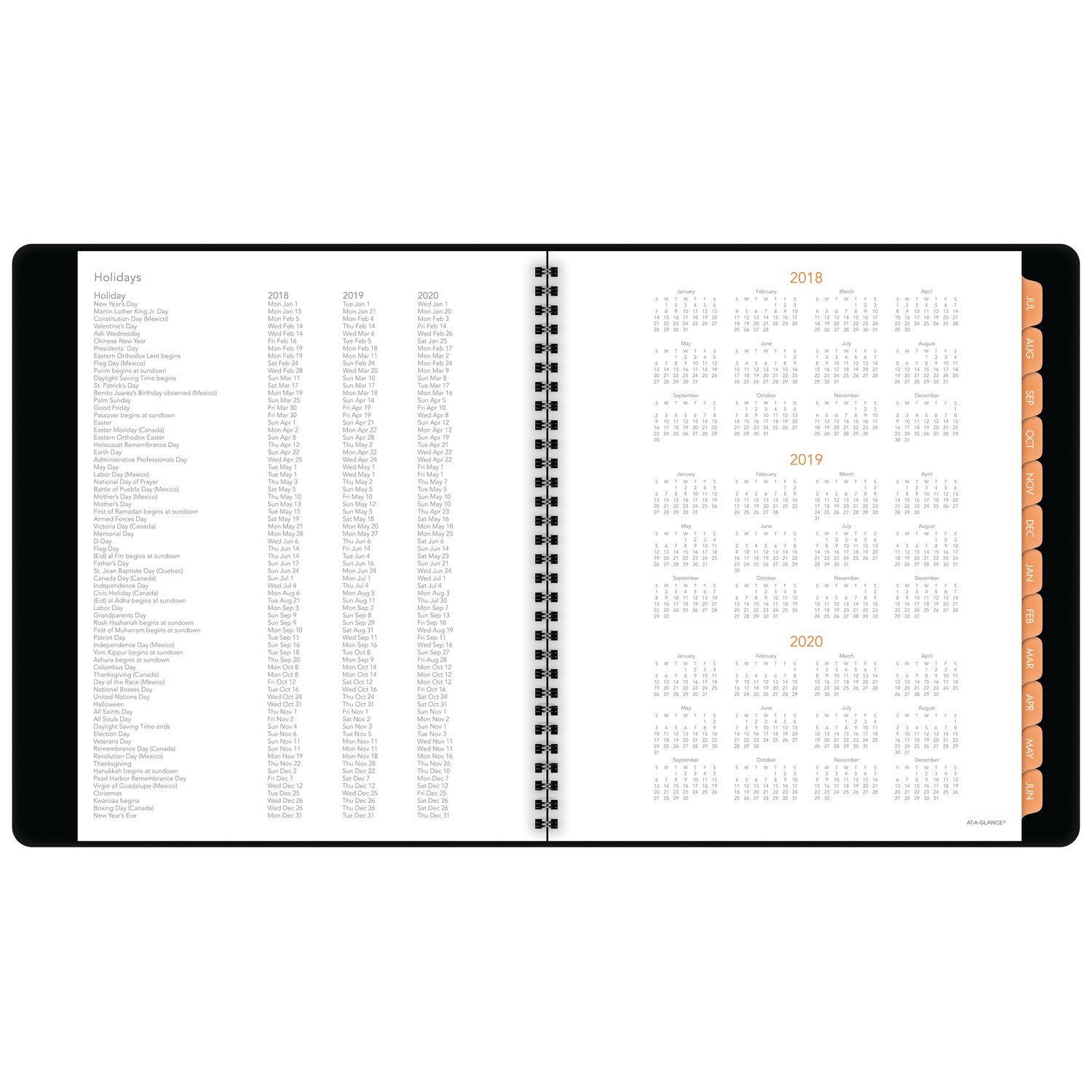 AT-A-GLANCE 2018-2019 Academic Year Weekly & Monthly Planner / Appointment Book, Large, 8-3/4 x 11, Plan.Write.Remember, Black (70595705)