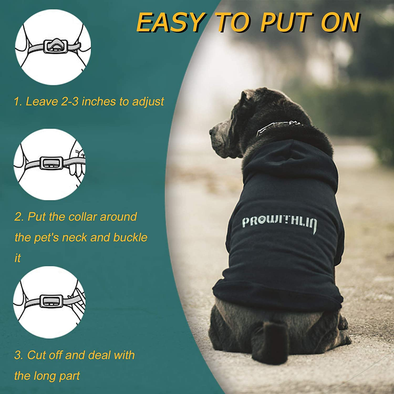 Taglia Unica per Tutti 8 Mesi di Protezione Collare Antipulci per Cani Waterproof Collare Antipulci Naturale per la Sicurezza dei Cani Collare Anti Zecche regolabile Collare Antipulci per Cani