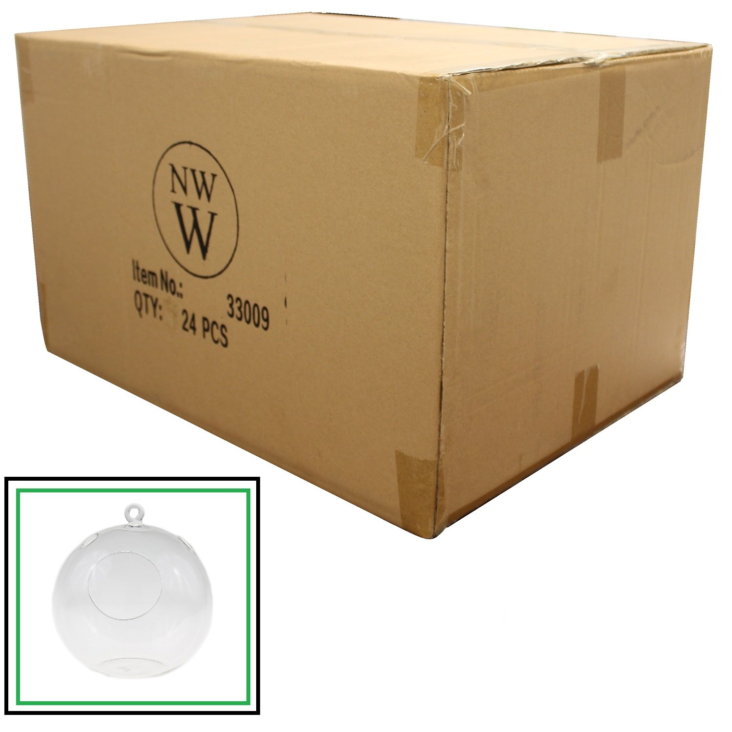 NW Wholesaler - Clear Blown Glass Terrarium - Case of 24 by NW Wholesaler