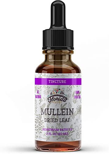 Mullein Tincture Extract, Organic Mullein Verbascum densiflorum Dried Leaf Herbal Supplement in Cold-Pressed Vegetable Glycerin 670 mg