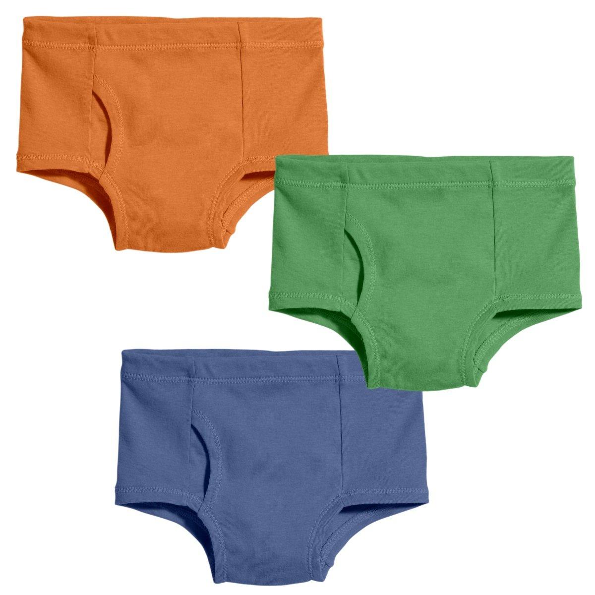 City Threads Boys Organic Cotton Brief Underwear For Sensitive Skin and Sensory Friendly (SPD), Boy, 4