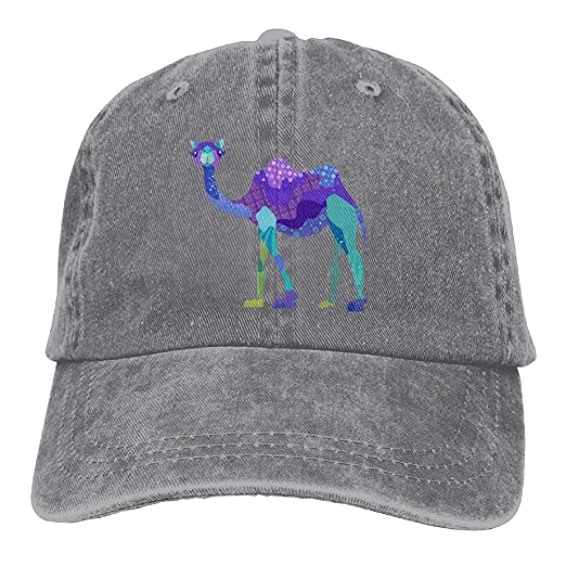 84f4da8f149 Source Point Camel Pattern Unisex Adult Baseball Hat Sports Outdoor Cowboy Cap  Snapback at Amazon Men s Clothing store