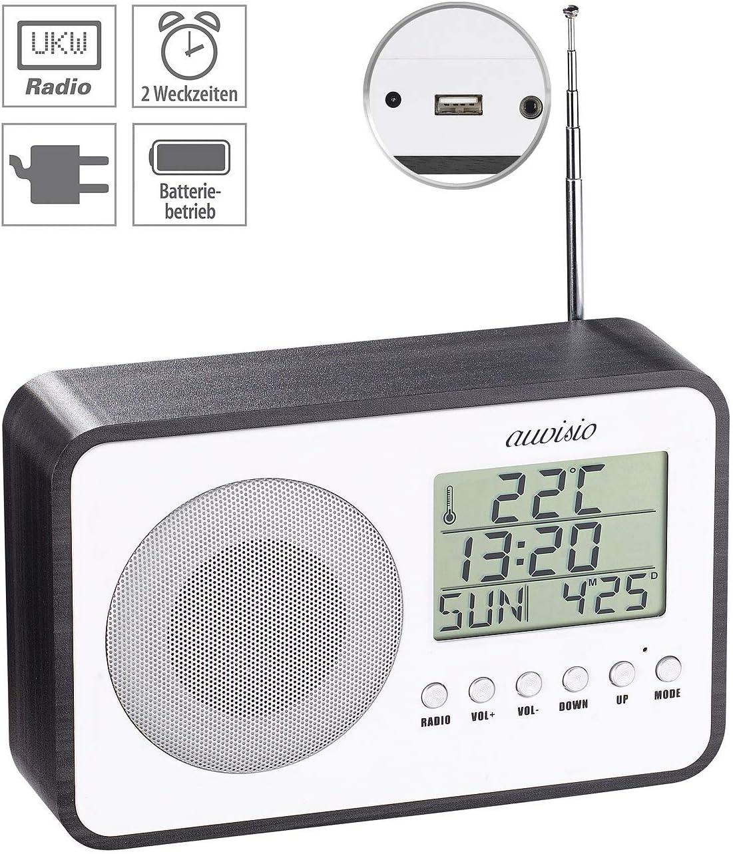 auvisio - Radiodespertador (batería de diseño: Despertador de Radio FM,  frecuencia Digital, Fuente de alimentación, Puerto de Carga USB (Radio con