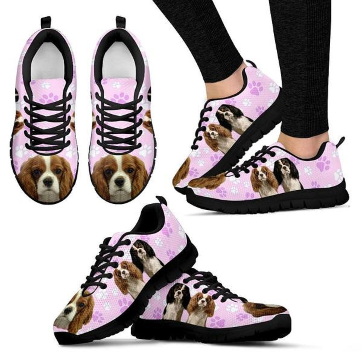 Amazon.com: shoetup lindo perro Cavalier King Charles ...