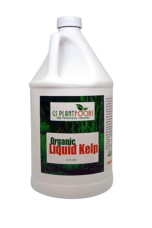 Liquid Kelp Seaweed Extract 1 Gallon Fertilizer Concentrate