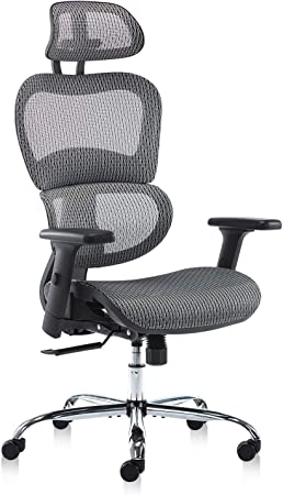 SMUGDESK Mesh Ergonomic Office Chair, With Adjustable Headrest And Armrests