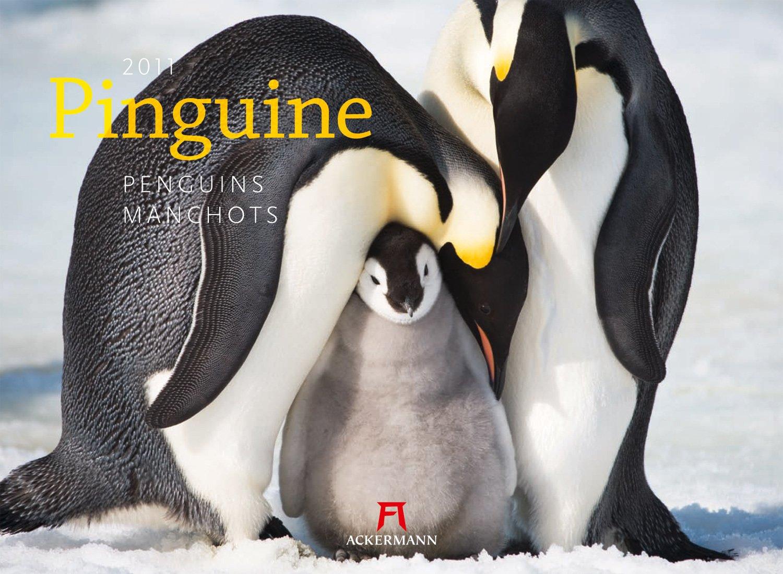 Pinguine 2011