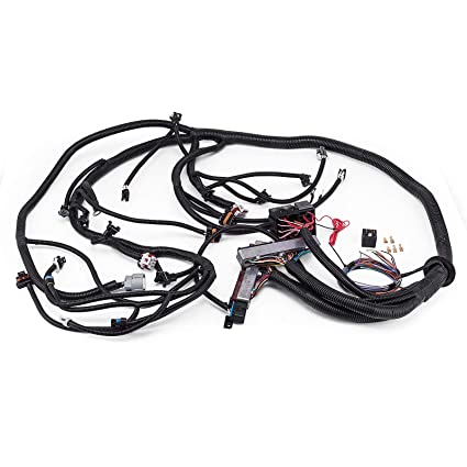 Amazon.com: Mophorn Standalone Wiring Harness for 1997-2002 LS/LSX on chevy battery terminal, chevy 1500 wireing harness color codes, chevy wiring connectors, chevy warning sticker, chevy speaker wiring, chevy speaker harness, chevy radiator cap, chevy fan motor, chevy power socket, chevy wiring schematics, chevy relay switch, chevy wheel cylinders, chevy clutch assembly, chevy wiring horn, chevy abs unit, chevy alternator harness, chevy crossmember, chevy clutch line, chevy front fender, chevy rear diff,