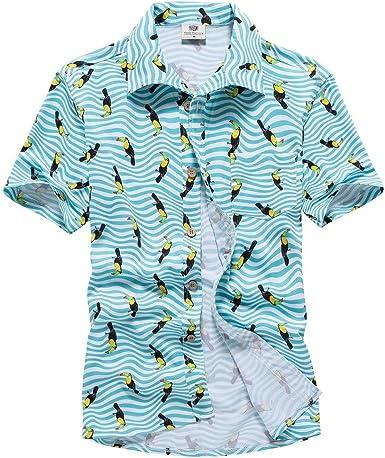 Camisa de Manga Corta con diseño de Rayas para Hombre, con un Solo Pecho, Estampado de pájaros y Botones Azul Azul M: Amazon.es: Bebé
