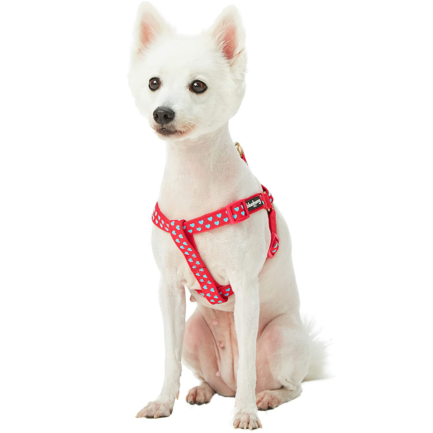 Lust Red (16.5\ Lust Red (16.5\ blueeberry Pet Step-in Velvety Sky bluee Heart Flocking Dog Harness in Lust Red, Chest Girth 16.5  21.5 , Small, Adjustable Harnesses for Dogs