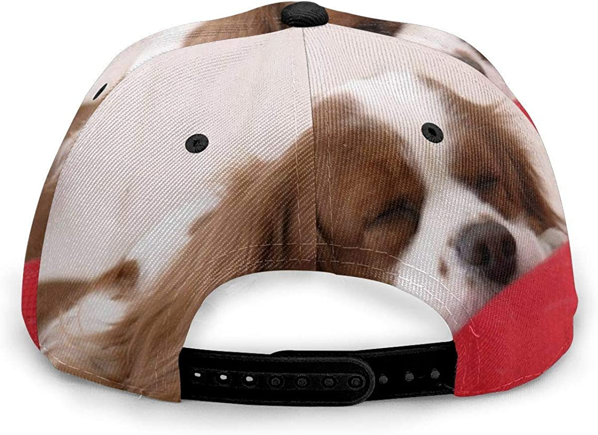 Cavalier King Charles On A Red Cushion Lightweight Unisex Baseball Caps Adjustable Breathable Sun Hat for Sport Outdoor