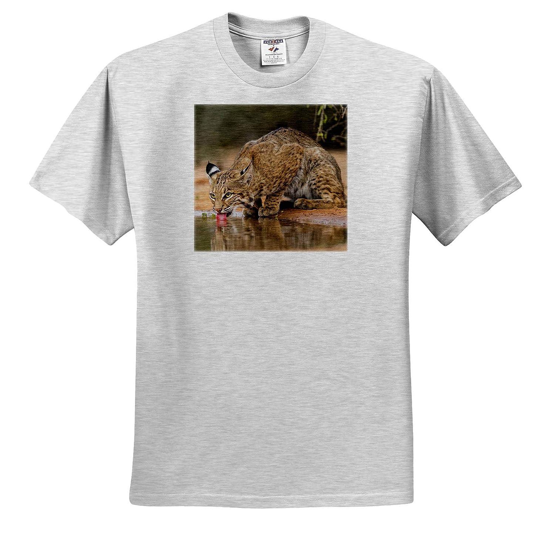Mammal Bobcat - Adult T-Shirt XL Drinking Lynx Rufus ts/_315031 3dRose Danita Delimont