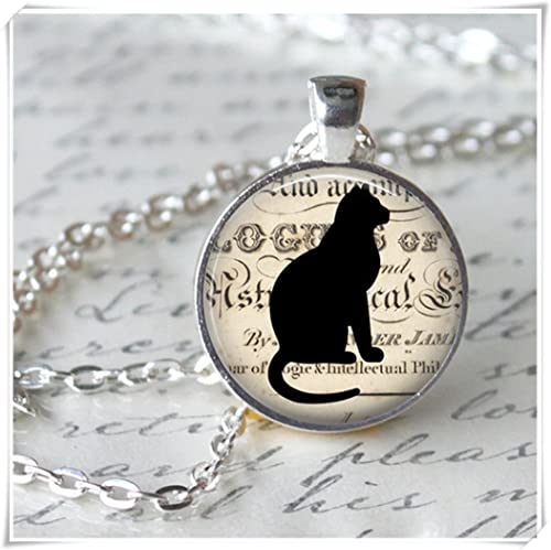 6cbd3261727ba3 Leonid Meteor - Collar con colgante de gato negro para ducha, Halloween,  gatito negro, collar de silueta negra  Amazon.es  Joyería